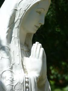 Mother of God Pray for Us! © SalveMaterDei.com, 2011 EA photographer