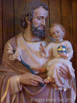 Guardian of Innocence Himself, Please Pray for Us! © SalveMaterDei.com, 2013