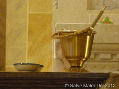 Bless These Holy Ashes Which We Place on Our Heads as a Sign of Penance ©  SalveMaterDei.com  2013 (EA photo)