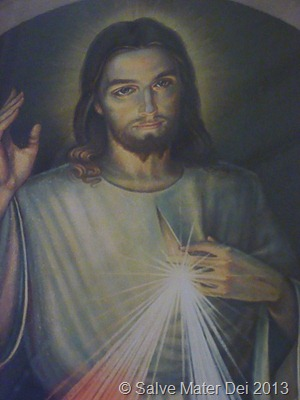 Jesus I Trust in You! the Divine Mercy Image © Salve Mater Dei 2013
